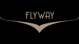 Flyway Aircraft Management